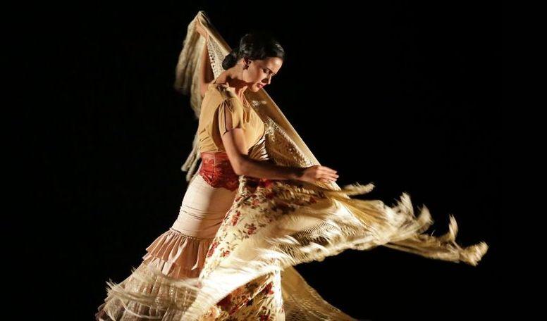 Clase Particular de Danza Española