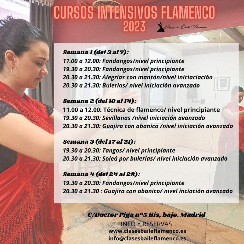 ursos de flamenco en Madrid clases Flamenco Danza Española