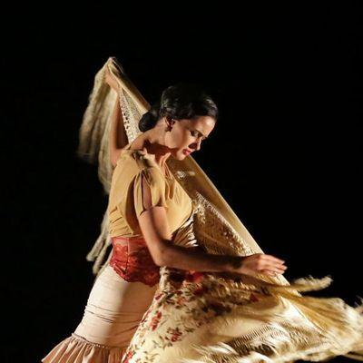 carolina pozuelo clases baile flamenco madrid